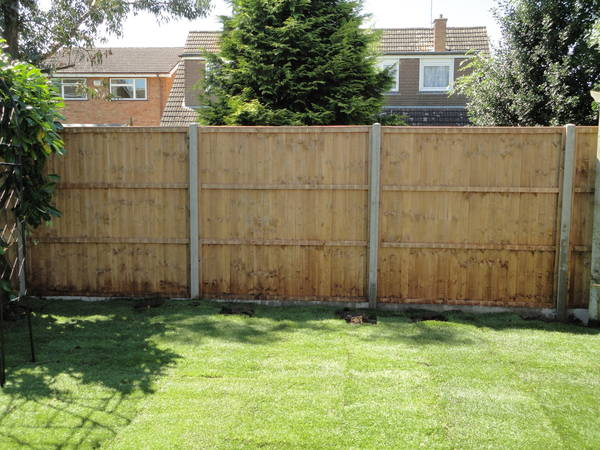 Concrete post fencing and Turf